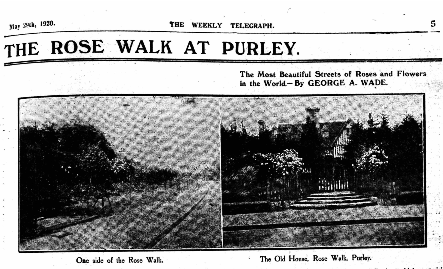 weekly telegraph 29 May 1920