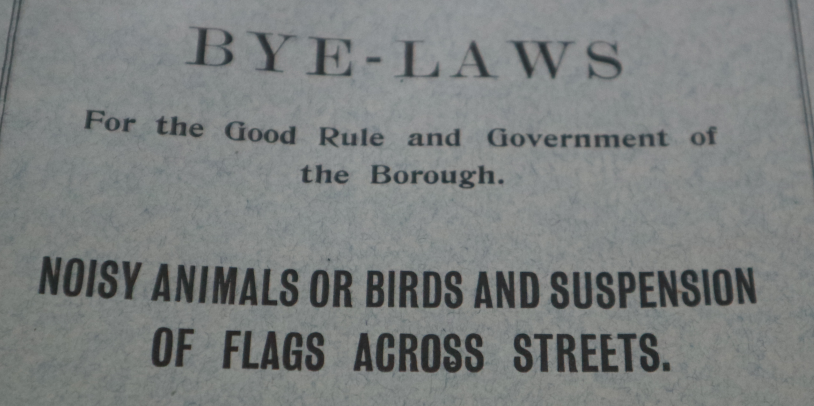croydon bye law