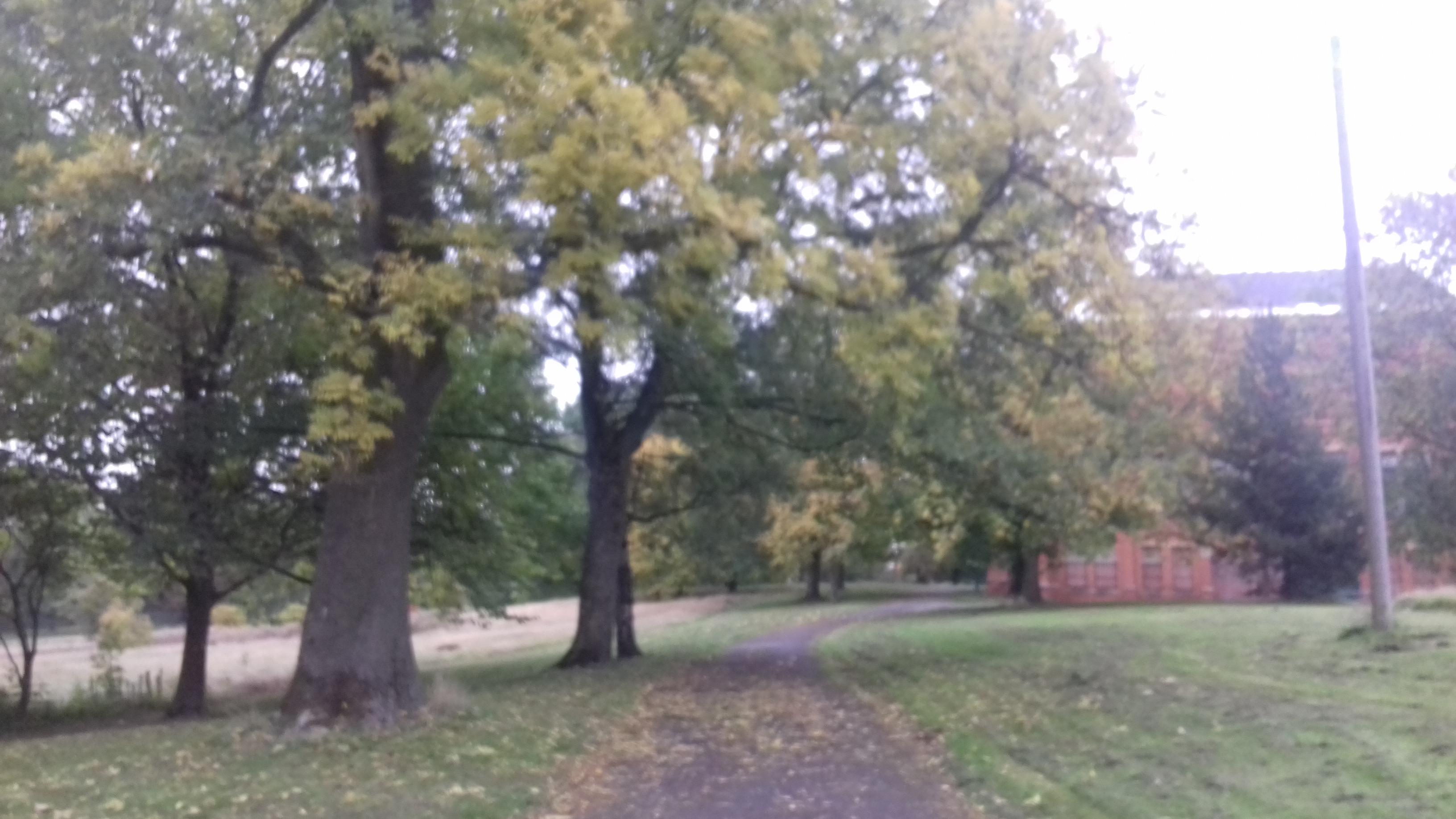 queen's park manchester