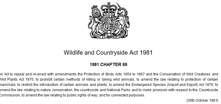 1981 wildlife and countryside act