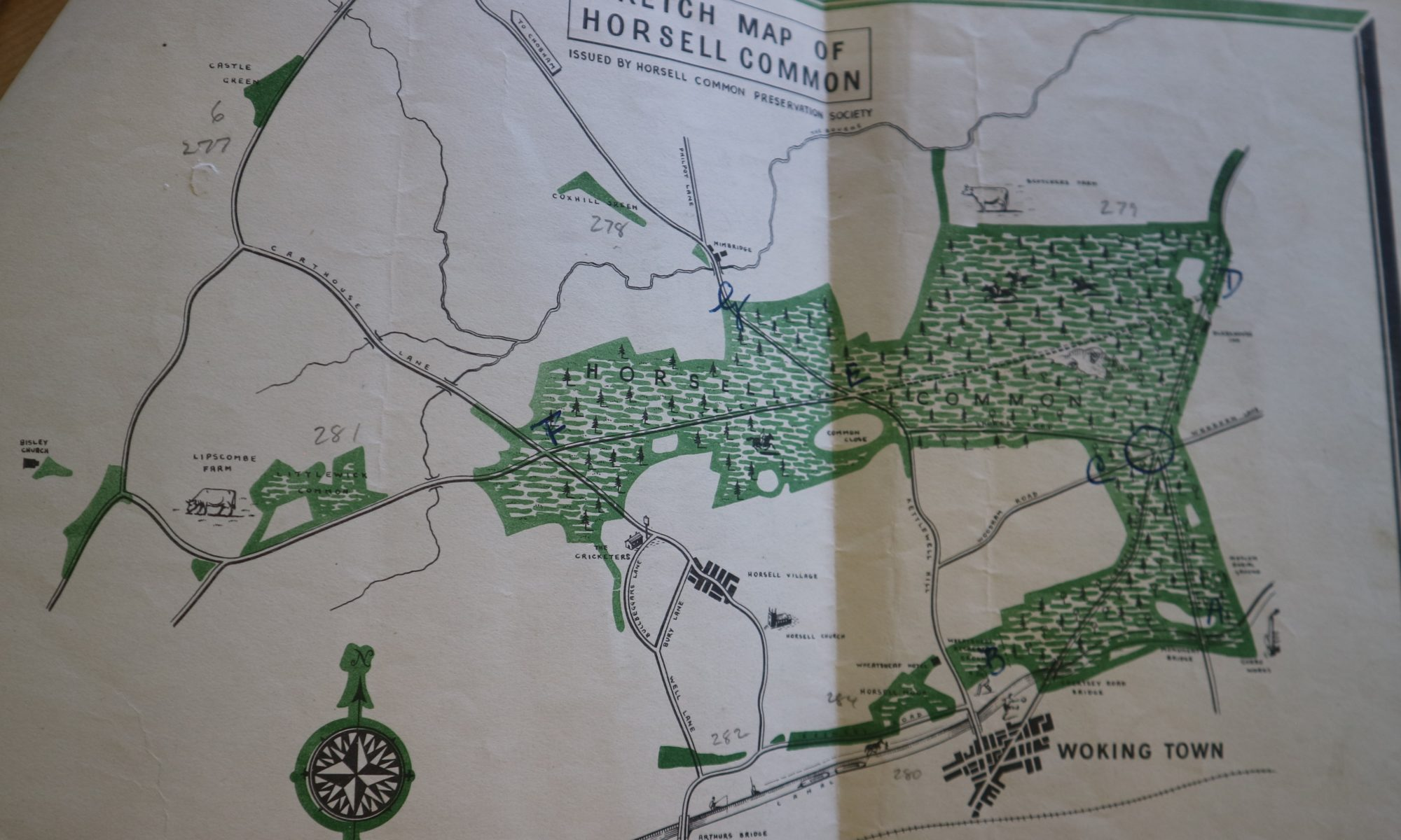 horsell common 1986